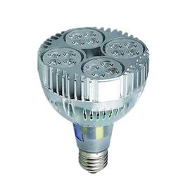 供应<em>LED</em>光源KPE-PAR30-A2 24珠