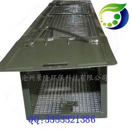 景隆2012双开门捕鼠笼使用的捕鼠笼 捕老鼠好用的工具