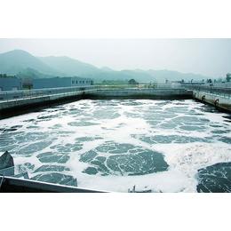 聚合氯化铝 纯度好  广泛应用各大行业 广州厂家直销