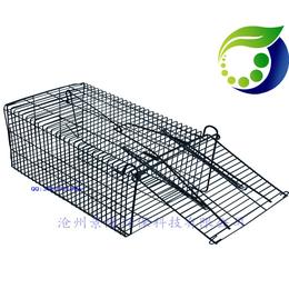 常规捕鼠笼 捕鼠笼怎么使用
