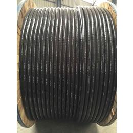 厂家直销 钢芯铝绞线 JL G1A 国标
