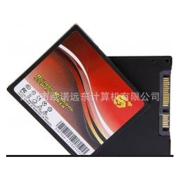 Dragon-Diamond SSD 8GB 1.8寸 SATA2 SLC 双通道