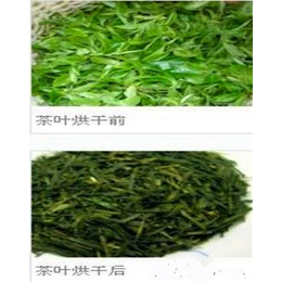 国内外畅销茶叶烘烤箱图片 茶叶热风循环烘烤箱