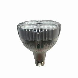 供应 邦特LED-PAR30<em>灯泡</em>-P05