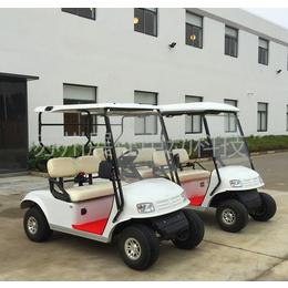 金华温州2座高尔夫球车 老人休闲代步车 景区游览观光车
