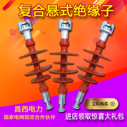 昌西FXBW4-330  100T复合悬式绝缘子