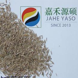 补充土壤有机质丨梨园种植鼠茅草丨绿肥鼠茅草丨北京嘉禾源硕