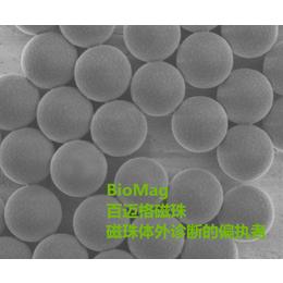 羧基磁珠偶联抗体蛋白