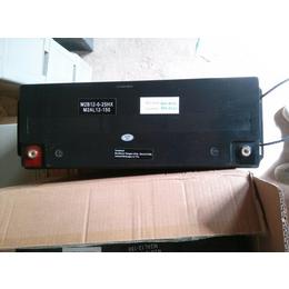 MGE蓄电池 梅兰日兰12VM2AL12-100电池低价销售