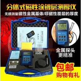 DR260分体式铁基涂层测厚仪涂镀层镀锌层测量仪油漆膜厚仪