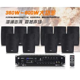 新款狮乐专业会议室音响设备