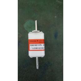 FENLONG品牌-RSM01MZ110KN快速熔断器