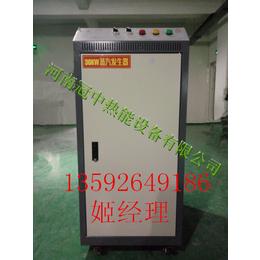 新型煮豆浆电蒸汽发生器价格