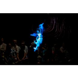 陕西西安幻影成像展示柜-故宫博物馆3D虚拟漫游