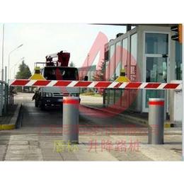 自动升降柱 开关电动升降路桩 遥控开关升降挡车地桩厂家批发