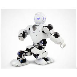 春晚人形机器人 表演机器人