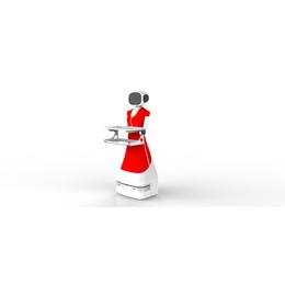 一米机器人+高配电机+持久续航