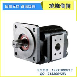厂家直销新渤海CBT-E312方健侧出油右旋齿轮泵厂家