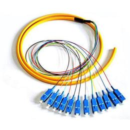 全新12芯SC束状尾纤单模 FC束状尾纤厂家直销