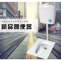 陶瓷蹲便器水箱套装 卫生间大便器家用防臭蹲厕缩略图