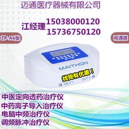 中药离子导入仪中频ZP-A6型号