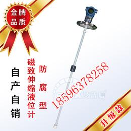 销售磁致伸缩液位计    上海磁致伸缩液位计厂家