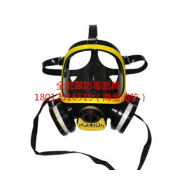HJ-01全面罩过滤式防毒面具