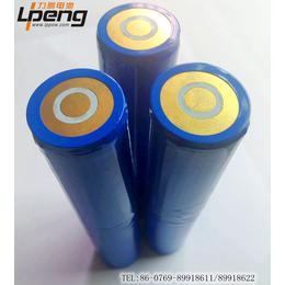 力鹏供应26650锂电池组