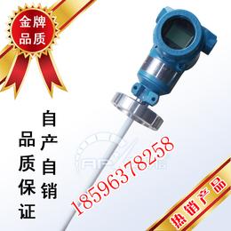 测量硫酸的射频导纳液位计 射频导纳物位开关山东厂家