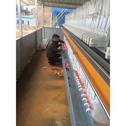 污泥板框压滤机生产商、污泥板框压滤机、山东汉沣环保(查看)