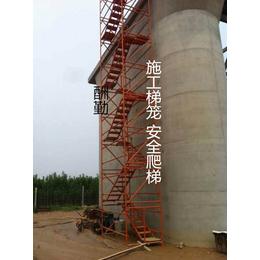 标准型优质安全爬梯酬勤供应