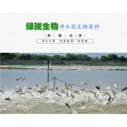 厂家直供山东绿陇肥水微生物菌剂净化水质抑制蓝藻防病害