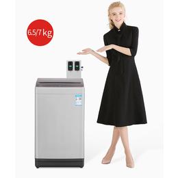 TCL投币洗衣机  XQB65-B01T自助洗衣机厂家直销