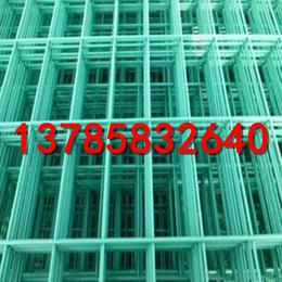 山坡菜园防护网    种植基地围栏网   护栏网专卖