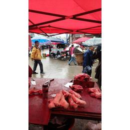 2017年阆中市洪山马氏猪肉销售店生鲜猪肉