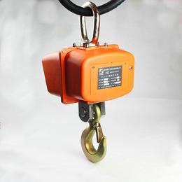 10吨手提式电子吊秤_带遥控器电子吊钩称