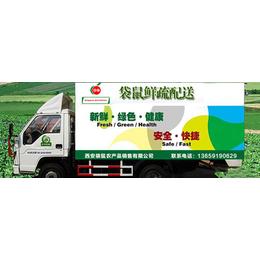 西安蔬菜配送公司、西安蔬菜配送