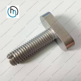 t型螺栓m12 钛螺栓高品质纯钛及钛合金T型螺栓 厂家直销