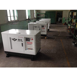 邯郸市10千瓦天然气发电设备