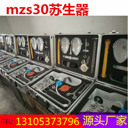 供永煤矿用自动苏生器便携式MZS-30检测仪优质厂家
