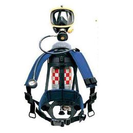 巴固C900呼吸器 正压 携气式空气呼吸器