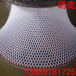 诺克 塑料平网 宠物脚垫 空调用网 水产用网 鱼塘养殖网