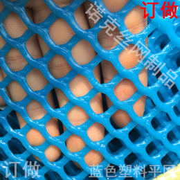 诺克 蓝色塑料平网 蓝色胶网 蓝色过滤网 蓝色塑料网