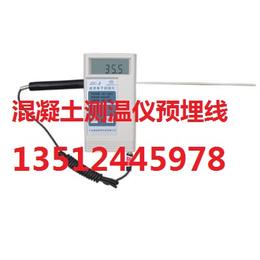 混凝土测温仪 混凝土电子测温仪 建筑电子测温仪 电子测温仪