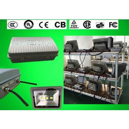 路灯应急装置质保五年100W泛光灯隧道灯投光灯应急装置