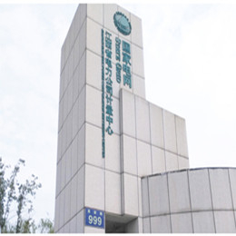 高盟門衛服務_江西電力公司示例縮略圖