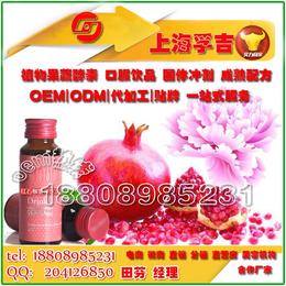 上海周边地区红石榴雪莲饮品GMP工厂