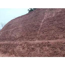 废弃矿场矿山生态修复绿化专用土壤团粒剂厂家销售