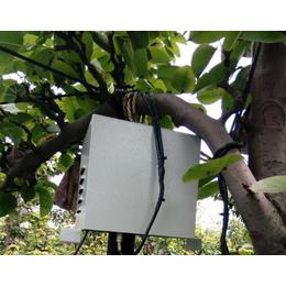 大棚节能型植物生长灯|同凯电子(在线咨询)|节能型植物生长灯