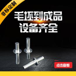 本公司专业生产不锈钢非标铆钉 台阶铆钉 空心铆钉 异形铆钉